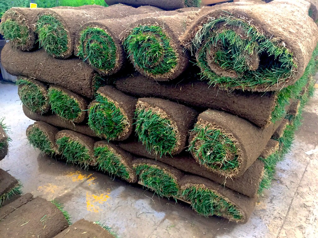 sod rolls of grass stacked up